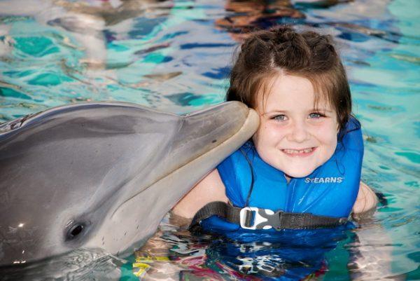 جولة عروض الدلافين في انطاليا